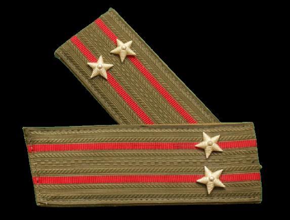 Бердус Николай Владимирович